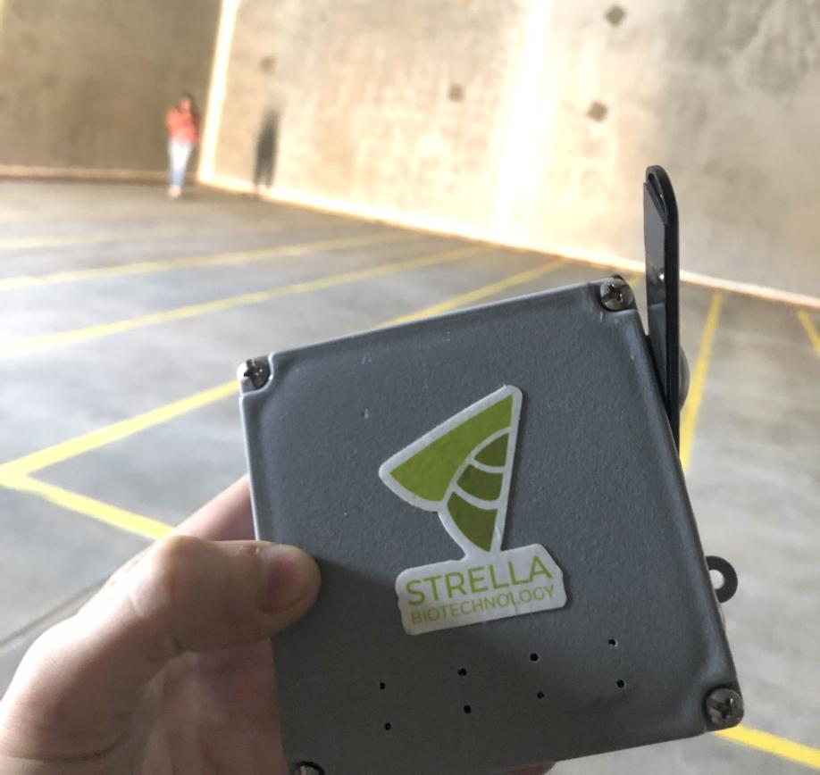 Strella - Ripeness Technology.